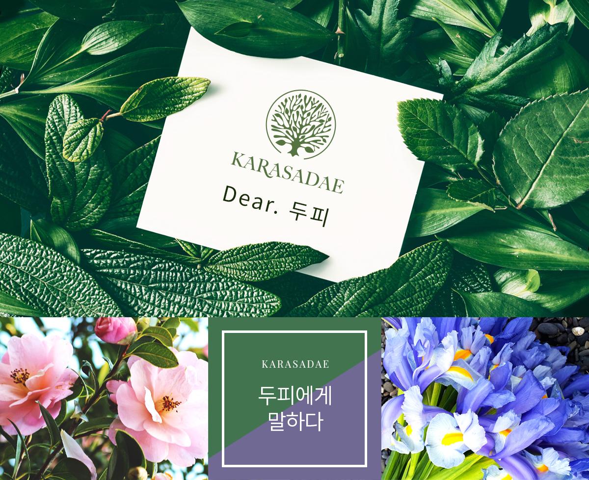 con_brand_02_karasadae_01