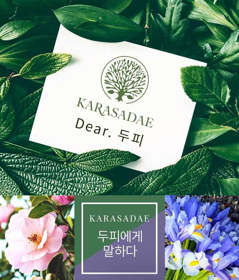 con_brand_02_karasadae_m01